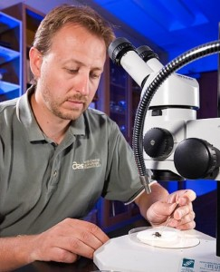 Dr. Jonathan Lundgren (Photo USDA)